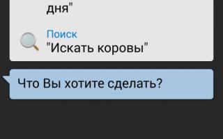 Приложение s voice что. S Voice что это за программа на Андроид